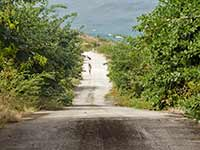Steep St. Kitts road
