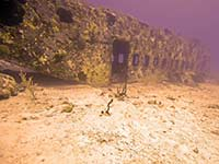 Coral Gardens airplane wreck