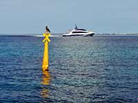 St. Barths Ferry and Anguilla