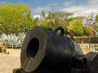 Fort St. Louis cannon