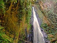 Syndicate Falls in Dominica