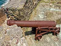 Rusty Cannon