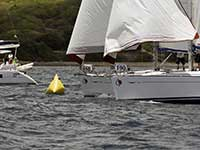 Antigua Sailing Week - Race Number 190