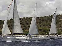 Antigua Sailing Week - Race Number 209