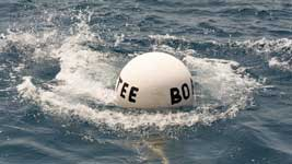 Committee Boat buoy