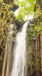 Emerald Falls in Dominica