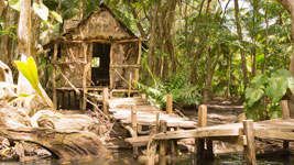 Calypso's Hut in the jungle