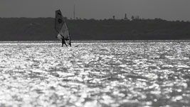 Windsurfer in Nonsuch Bay