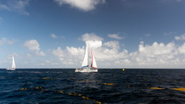 La Bella Vita downwind finish